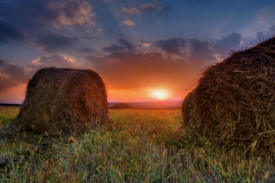 Hay Sunset